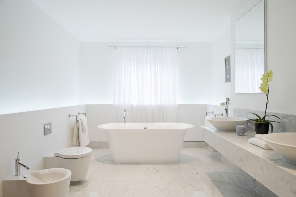 white bathroom ideas with plants