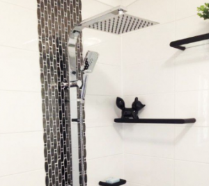 shower-head-and-rail